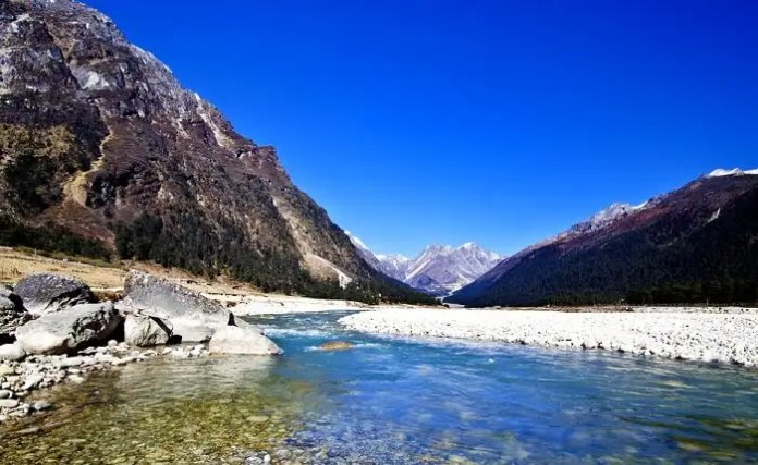 Yumthang Valley: A Guide For Witnessing Nature's Magic