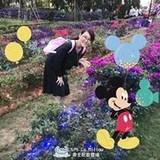 Alice Pan