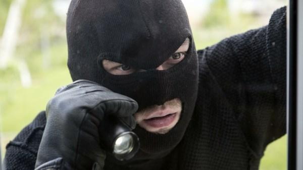 В Новосибирской области подсчитали количество преступлений ...