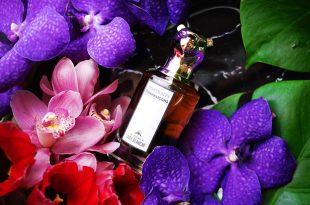 [香氛][香水] 潘海利根,獸首香水,布蘭奇夫人的復仇(綠色花香調)