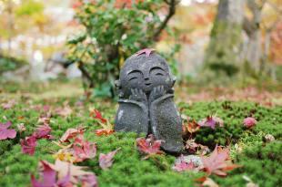 [自助旅行] 京都賞楓,金福寺詩仙堂圓光寺