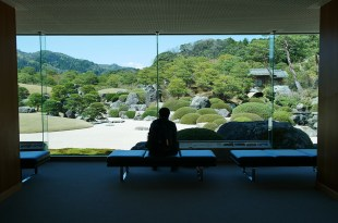 [自助旅行] 島根足立美術館,日本第一的日式庭園之美
