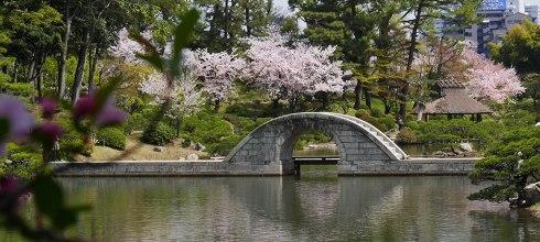 [自助旅行] 廣島自助旅行,縮景園日式庭園