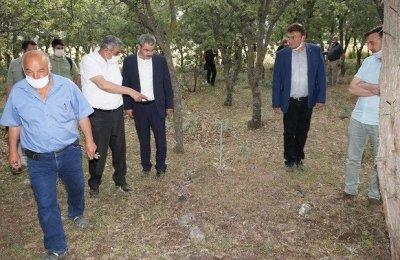Denizli'de 99 yıl önce yakılarak öldürülen 83 Türk'ün mezarı tespit edildi