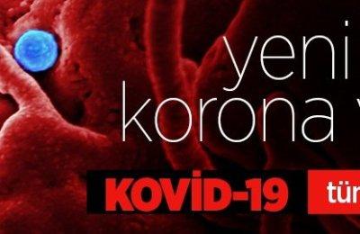 Dünya genelinde Kovid-19 tespit edilen kişi sayısı 21 milyon 617 bini geçti
