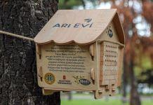 Hero Baby, 50 milyon arıyı doğaya kazandırmayı planlıyor