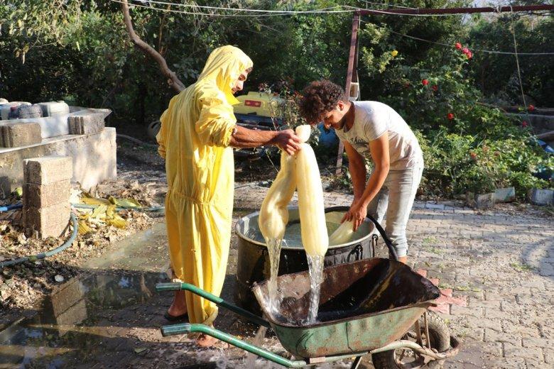 1604738543 497 asi nehri kiyilarinda yetistirilen lif kabaklari temizlik urunlerine donusturuluyor