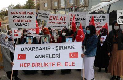 Şırnak'taki terör mağdurlarının HDP binası önündeki eylemine Diyarbakır annelerinden destek