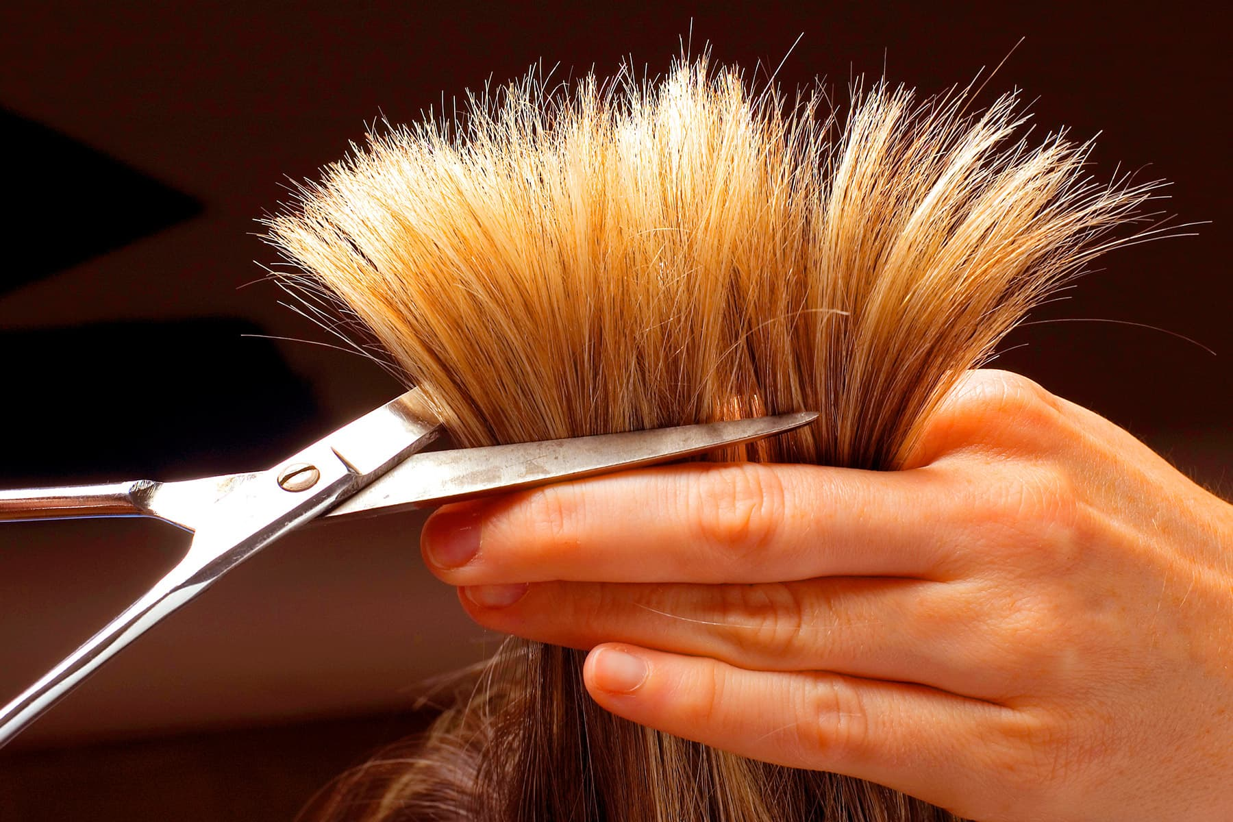 Hair Quiz Test Your Knowledge Of Problem Hair Dos And Don Ts