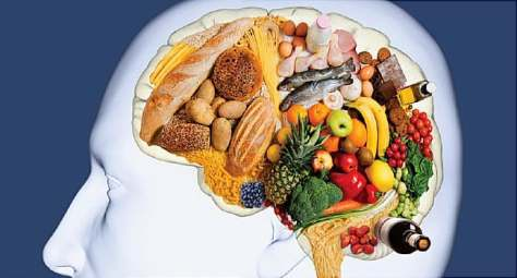 Image result for food for the brain
