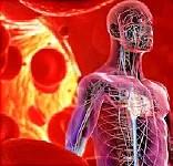 Hypertension: The Silent Killer