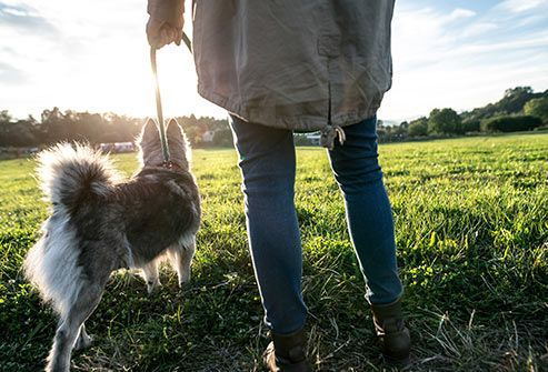 woman walking her dog in nature
