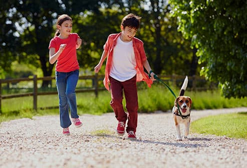 493ss_thinkstock_rf_kids_walking_dog