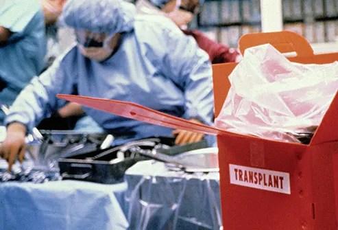 organ cooler in operating room
