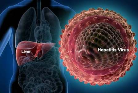 A Visual Guide to Hepatitis A, B, C