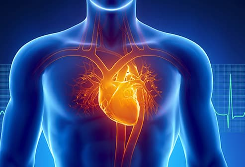 How Heart Disease Affects Your Body
