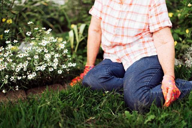 woman resting in garden