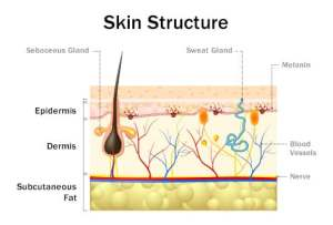 Pictures: What You Should Know About Skin Infections