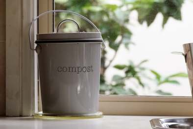 photo of compost bin