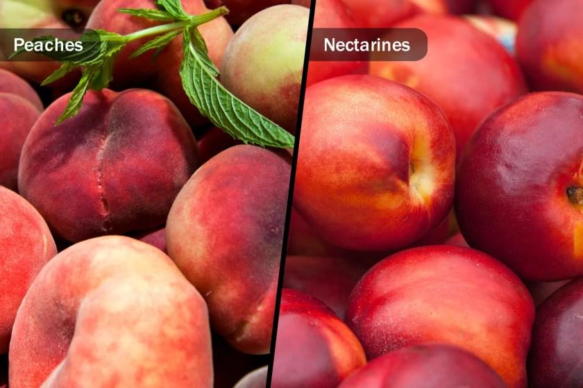 peaches vs nectarines