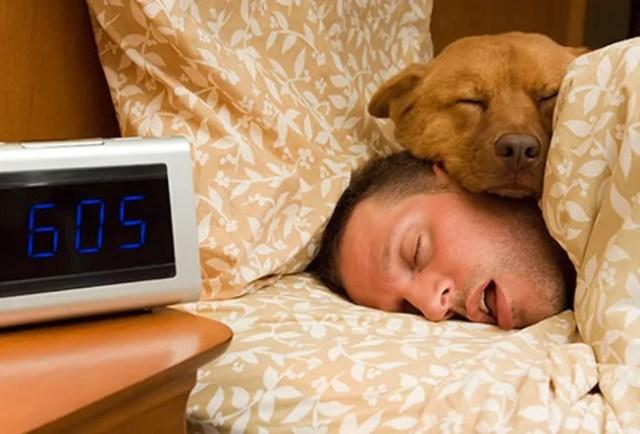 man sleeping with dog