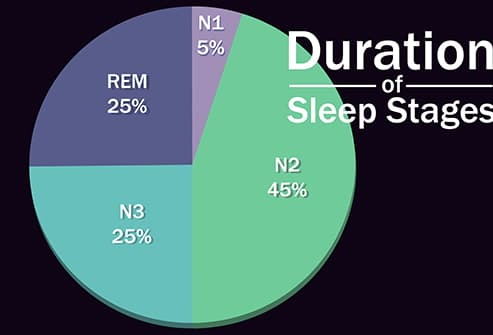 sleep stages pie chart