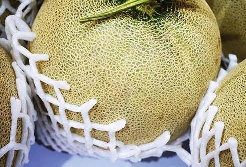 cantaloupes for sale