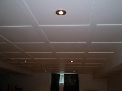 Construction S G Plafond Suspendu