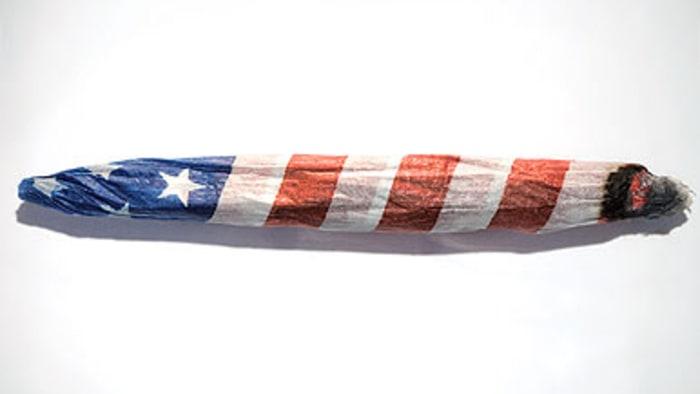 Image result for Marijuanamerica