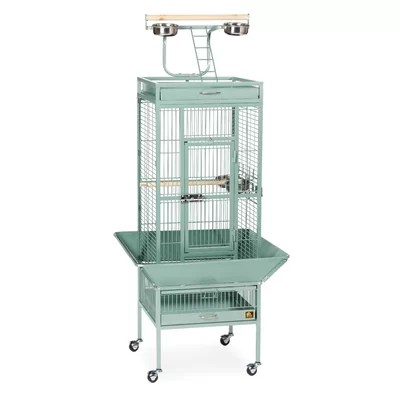 Signature Series Select Small Bird Cage Color: Sage Green