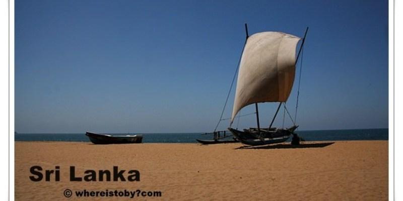 斯里蘭卡。Negombo~好大一隻鮪魚。