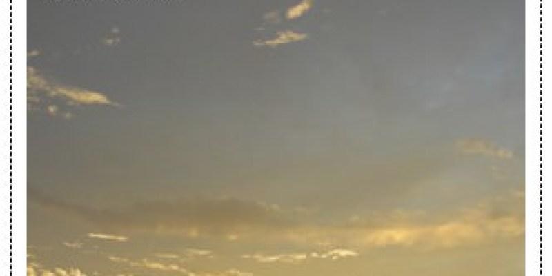 第四天的達爾文。。夕陽無限好