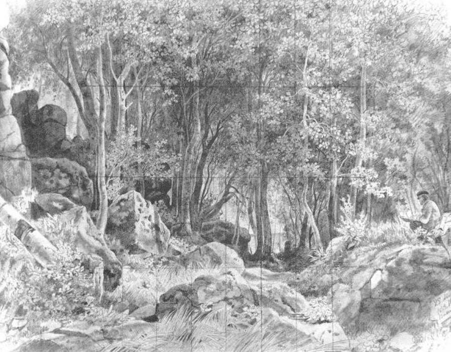 When drawing pictures of the seasons, what do you usually draw to show autumn? Deciduous Forest On Rocky Coast Valaam Ivan Ivanovich Shishkin Wikioo Org The Encyclopedia Of Fine Arts