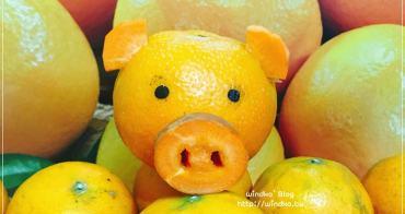 己亥豬年∥ 手作可愛橘子豬。擁抱茂谷柑的豬之諸事大吉啊!