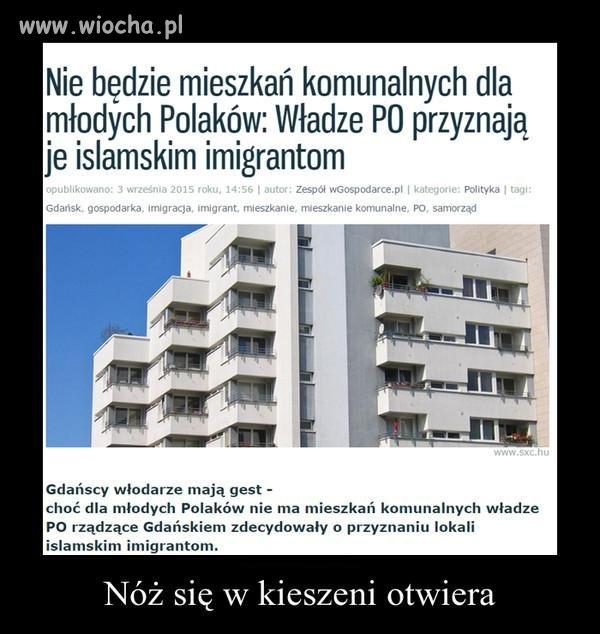 https://i1.wp.com/img.wiocha.pl/images/a/a/aa5e7106375bc6d7d788c0bc6eb7dfd5.jpg