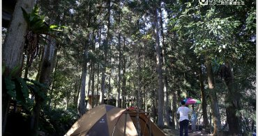 露營   苗栗南庄。喝納灣露營區.飄著咖啡香的原始森林優質營地