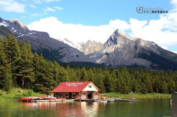 加拿大 | 加西露營行程Day 05。Jasper.賈斯伯最容易看到熊的重點行程