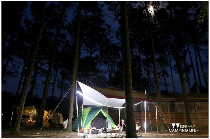露營   苗栗南庄。松濤意境露營咖啡館.聽風與松樹的對語