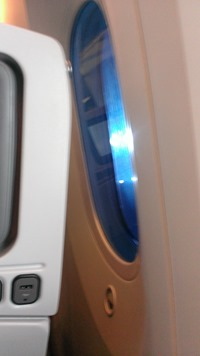 The window on the 787 ANA plane