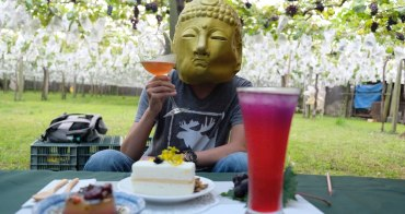 新社景點︳新峰農場-葡萄樹下的饗宴,產地直達餐桌浪漫下午茶