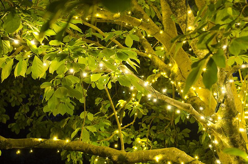 How Determine Brightness Light Bulb