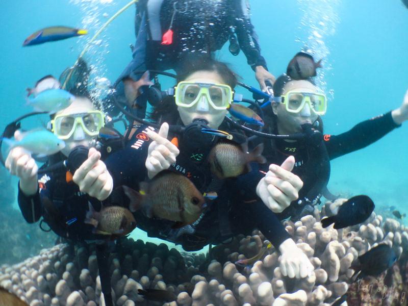 【長灘島旅遊】菲律賓長灘島潛水體驗(馬力歐潛水中心) 六天五夜自助海島旅行