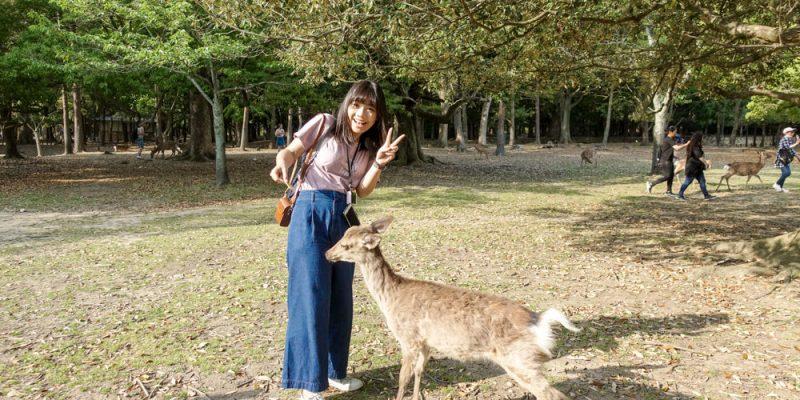 【京都旅遊】京都奈良熱門景點一日遊:金閣寺、嵐山、伏見稻荷大社、奈良公園|京都自由行推薦