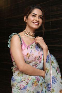 Ruhani Sharma Hot In Saree3