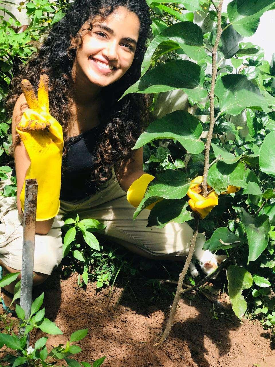 Anupama Parameswaran Accepts Green India Challenge