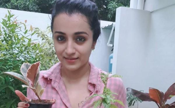 Trisha Latest Pics of Green India Challenge