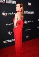 Sarah Drew Greys Anatomy 300th Episode Celebration TAO