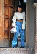 Vanessa Hudgens shows off her fit abs while picking up a food delivery