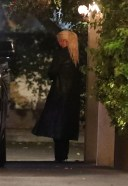 Christina Aguilera Dines at Ysabel restaurant with friends