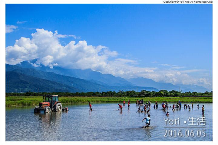 [花蓮鳳林] 找到田國際泥巴運動會 | 最瘋狂最熱血最無厘頭的農村經典賽事!